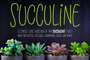 SuccuLine